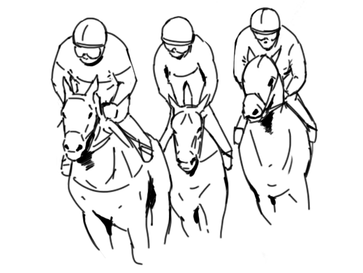 HORSE RACING GUIDELINES